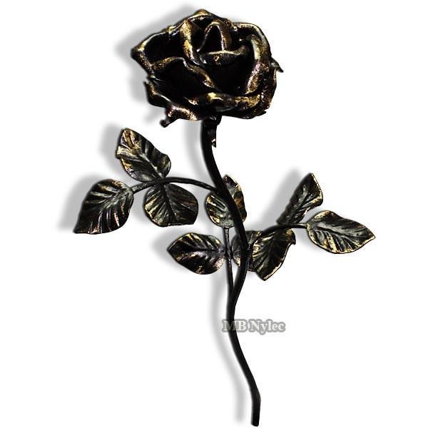 Elegancka kuta róża prezent